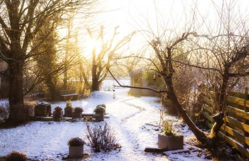 So machen Sie Ihren Garten winterfest